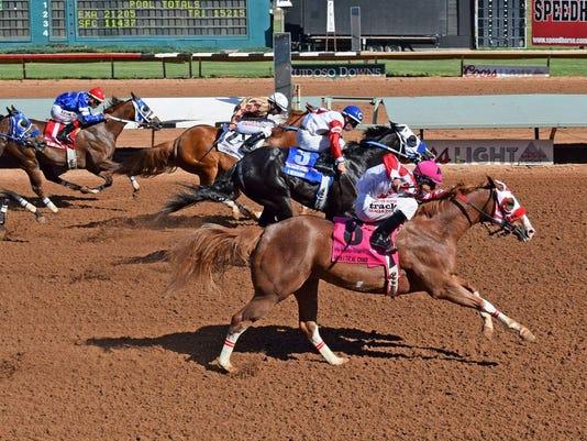 FMN Horses 0904