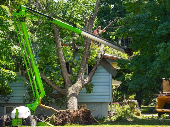 Workers clear a tree resting against a home at the