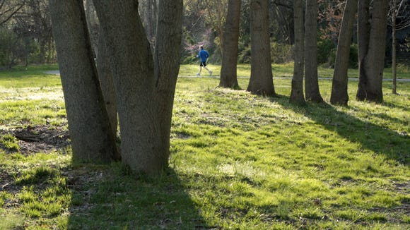 The Alapocas neighborhood is near popular public parks. A jogger is hit by late day sun in Alapocas Run Park along the Brandywine River, Tuesday, March 27, 2012.  The News Journal/William Bretzger