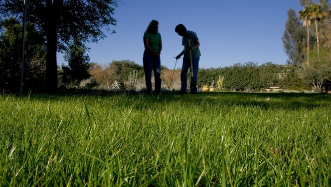 Unlike the many commercial properties with lush winter lawns, residents actually use theirs.