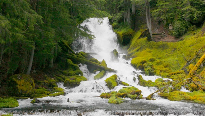 Rough Rider Falls on the Upper Rogue River near Crater Lake.