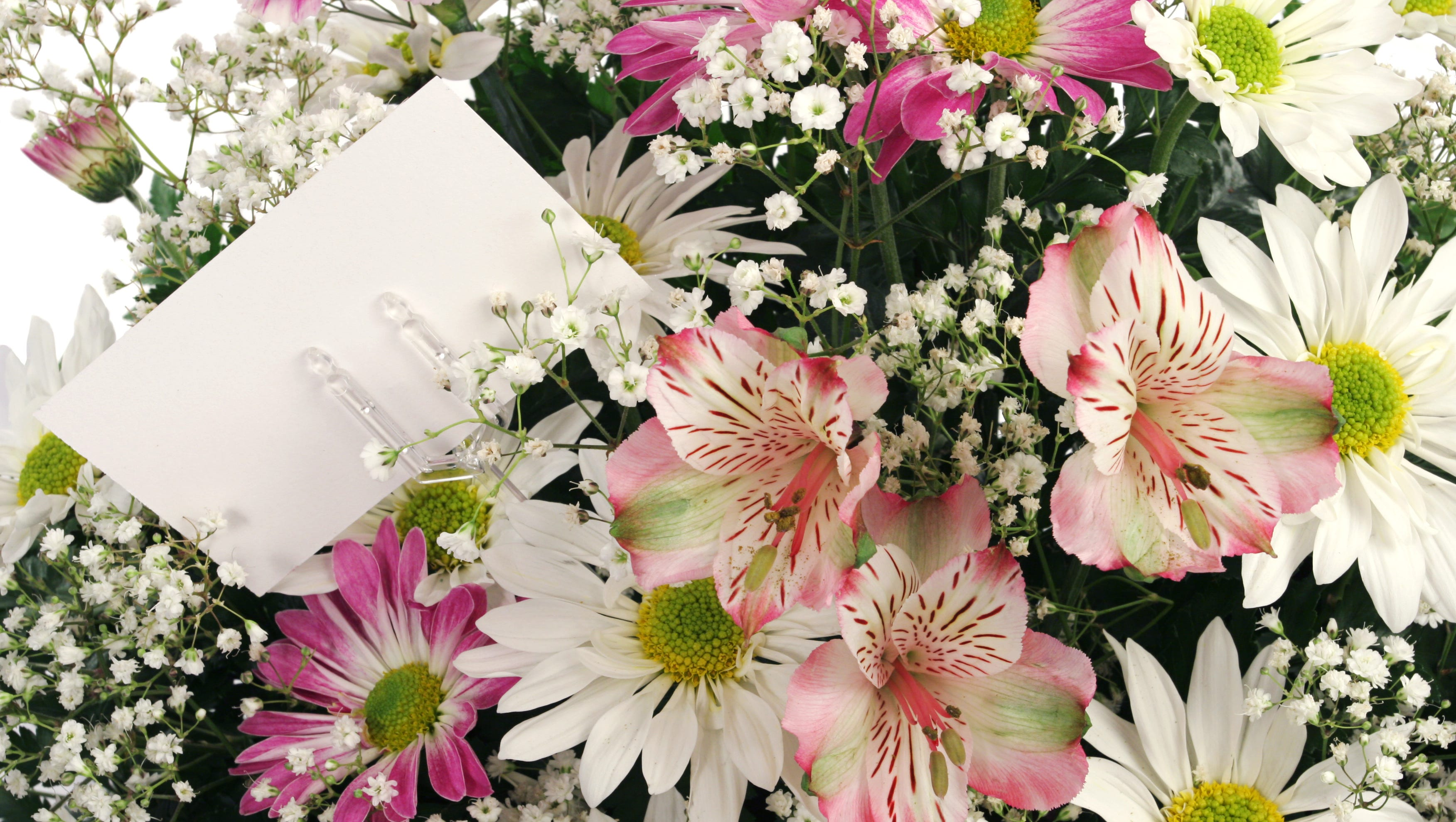 MAY FLOWERS Floral Delivery