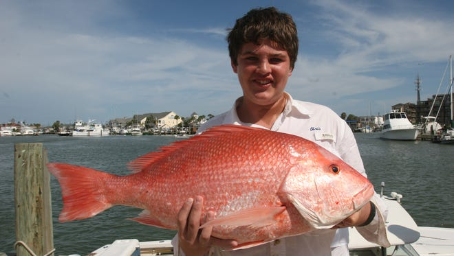 Federal recreational snapper season runs from June 1-3 for anglers in private boats.