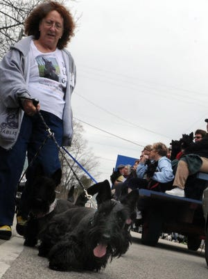Deb Senalik of Grayslake, Ill., walks with Gryffin, Guy Noir and Paladin — or, maybe, Gryffin, Guy Noir and Paladin lead Deb Senalik — in last year's Scottie Parade.