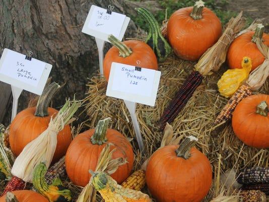 farmers market12.JPG