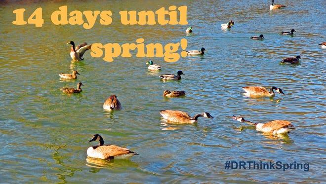 Signs of spring at Hedden Park, Randolph, N.J. 14 days until spring. #DRThinkSpring 2016