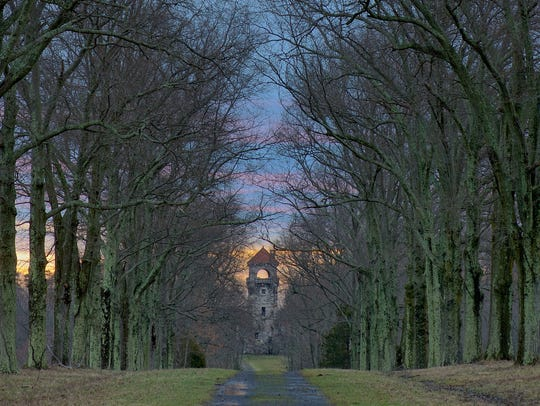 Sunrise at the Pin Oak Allee looking toward the Mohonk