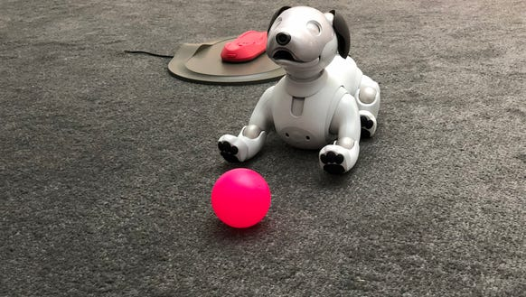 Aibo is a reboot of Sony's robot dog.