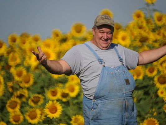 WSF 0901 Illinois sunflowers 2