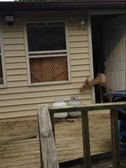 A deer peeks out of a house in West Virginia. The homeowner