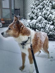 Dottie loved cold weather and snow.