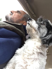 Steve Curtis and his late dog Murphy. Curtis tried to pry the jaws open of an attacking dog July 8, 2018 but was unable to save Murphy.