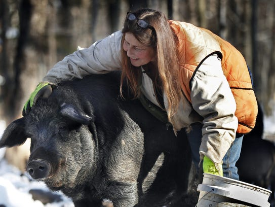 Susan Frank pets one of her mulefoot pigs. The American