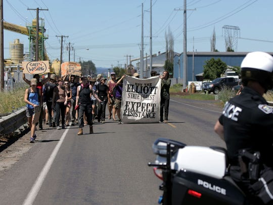 Protesters gather in front of the Seneca Jones biomass cogeneration plant off Highway 99 north of Eugene, Ore. Monday, July 7, 2014. The sheriff?s office reported that 6 people were inside the mill and two had chained themselves to equipment on. (AP Photo/The Register-Guard, Alisha Jucevic)