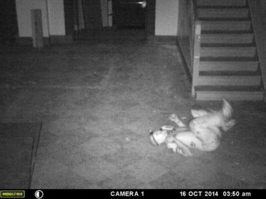 -Smith Door camera 012.jpg_20141028.jpg