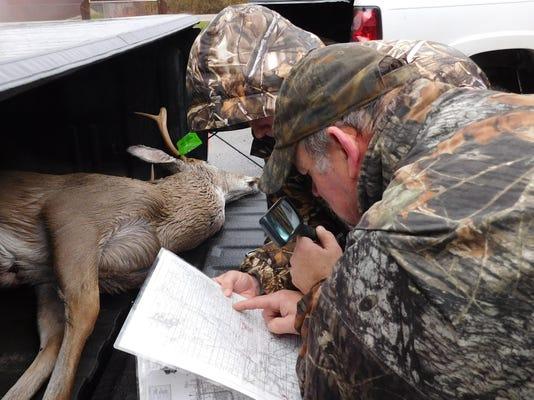 01-deer test