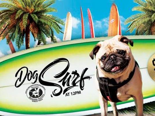 636577829884614081-Dog-surfing.jpg