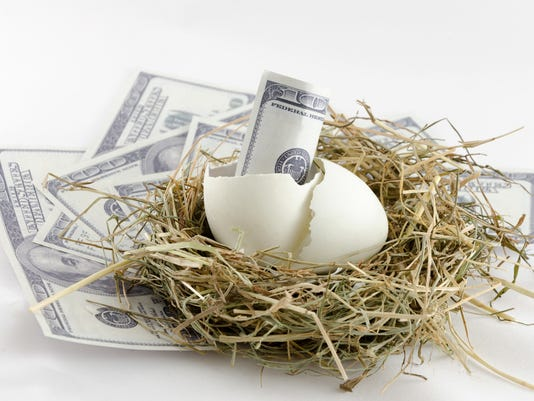 money in nest egg