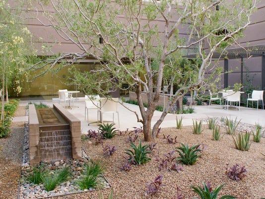 Scottsdale Healthcare Thompson Peak Hospital healing garden