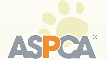 The ASPCA will hold an adoption event for hundreds of dogs and cats March 18-20 in Sanford.