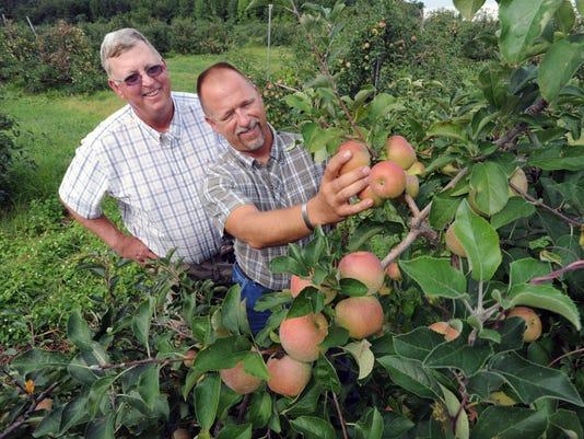 peaches main