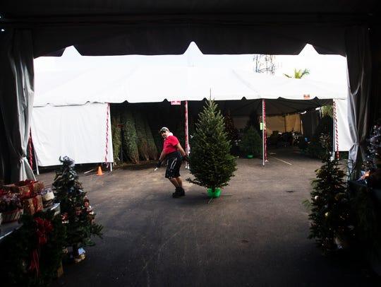 Baudel Ramirez, an employee of Wisconsin Trees prepares