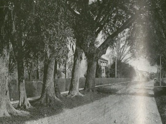 Lafayette Street in the early 1900s. Today's Lafayette Museum – Alexandre Mouton House –  is in the center of the picture, somewhat obscured by trees.