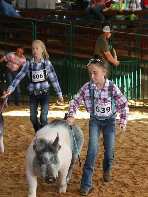 Due to the COVID-19 pandemic, this year's Tuscarawas County Fair will be limited to junior fair events. The fair will run from Sept. 21 to 27.