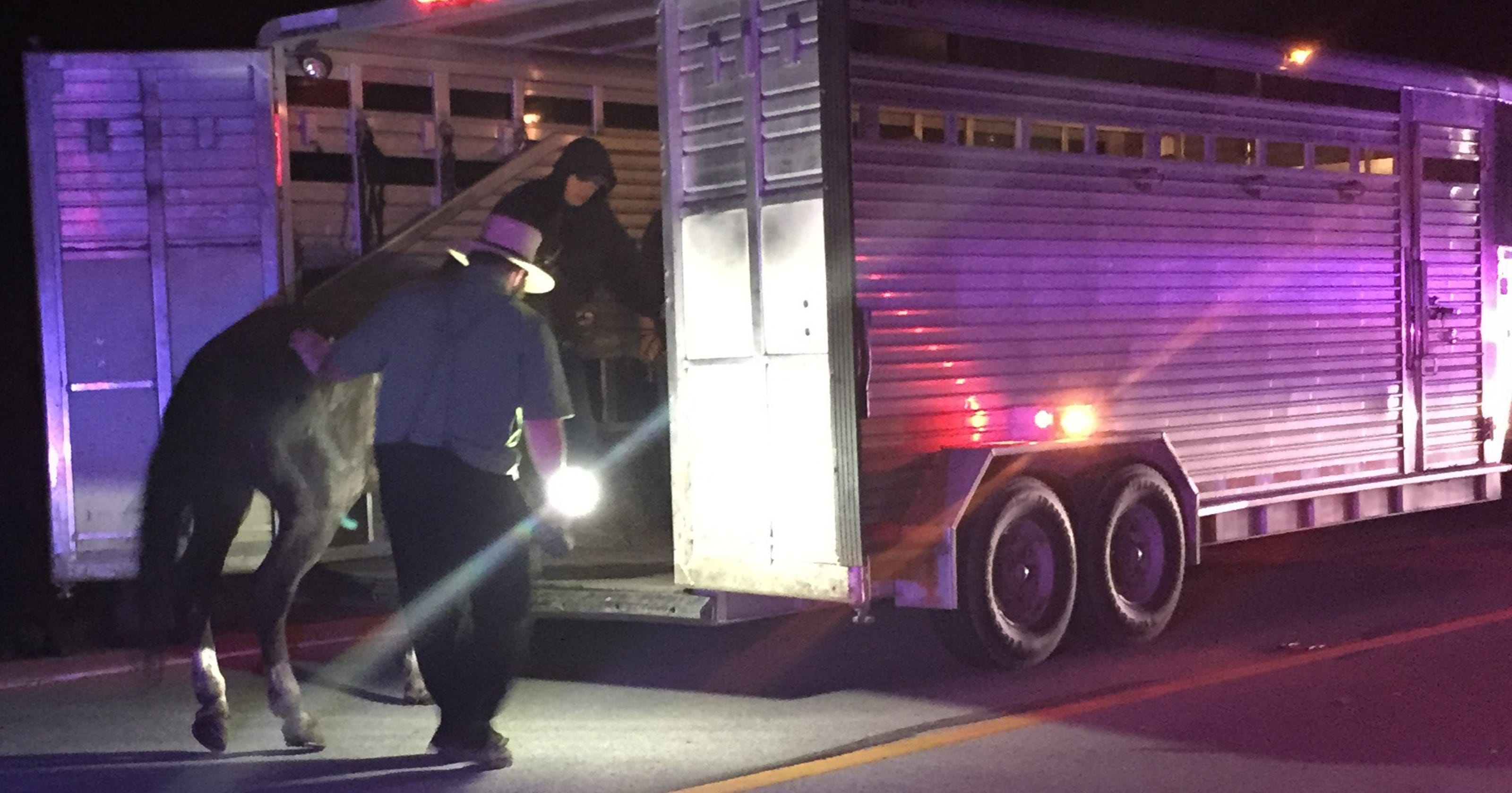 Amish teen dies in Indiana buggy accident