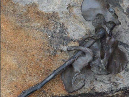 Four hip bones were found threaded on a stick.
