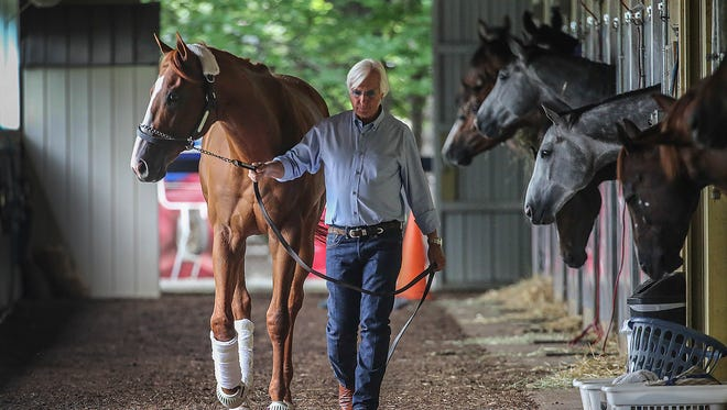 Trainer Bob Baffert walks Justify around the barn at Belmont Park after the horse arrived at the track on Wednesday.