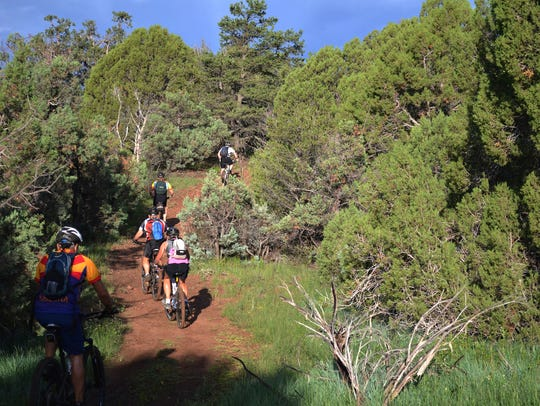 6/24 Beginner Skill Level Mountain Bike Ride | Join