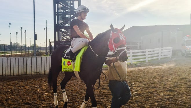 International Star prepares to work Saturday morning at Churchill Downs.