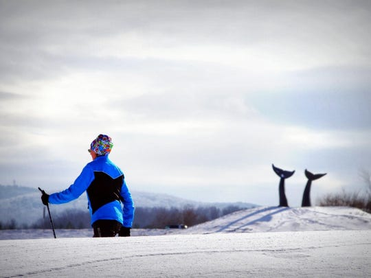 "Cross Country skiing in South Burlington near ""Reverence"" the whales' tails sculpture."