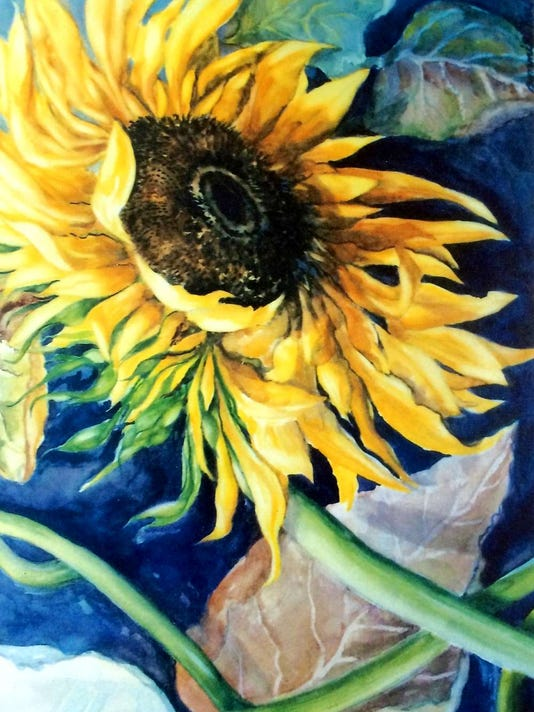 081016-nn-heilmansunflower.jpg
