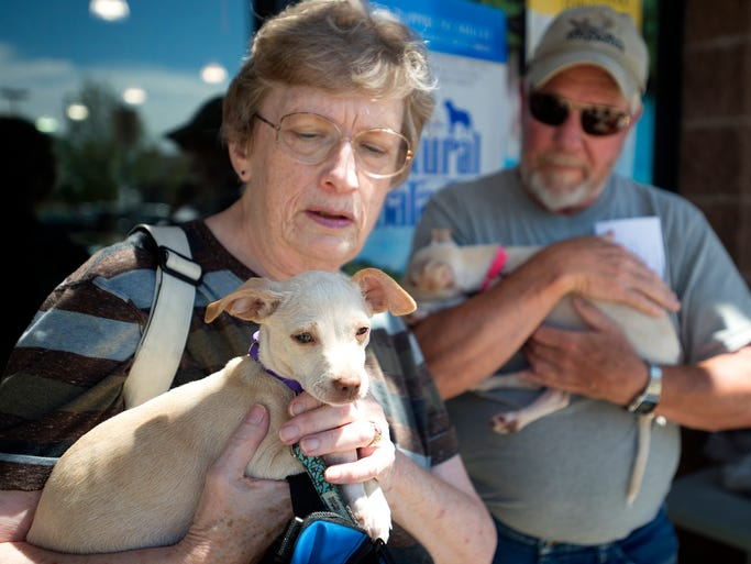 All Aboard Animal Rescue Fort Collins