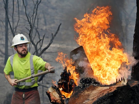 Utility worker Michael Quinliven shovels dirt onto a burning stump so he can cut down the charred ponderosa pine next to it Monday, Sept. 14, 2015, in Middletown, Calif. Utility crews worked to remove fire-damaged trees that took down power lines and threatened further damage following a wildfire there two days earlier. Two of California's fastest-burning wildfires in decades overtook several Northern California towns, killing at least one person and destroying hundreds of homes and businesses and sending thousands of residents fleeing highways lined with buildings, guardrails and cars still in flames.