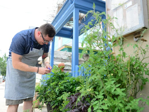 a(muse.) Head Chef/Owner Hari Cameron grows ingredients