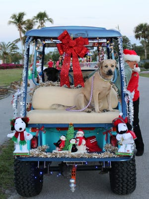 Dax waits patiently for the parade to start. On Christmas Eve, Dec. 24, 2017, Capri residents gathered for the 10th Annual Golf Cart Parade.
