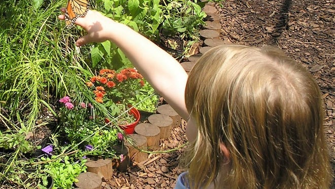 Want to grow a butterfly garden? Pick up plans for one at WNC Nature Center.