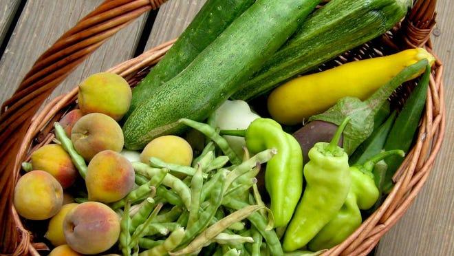 A July basket of freshly harvested summer crops - fresh peaches, cucumbers, eggplant, Italian zucchini, yellow squash, patty pan squash, black-eyed peas, okra and banana peppers.
