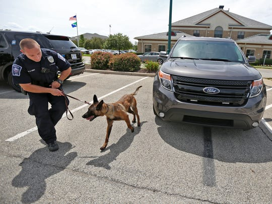 Fishers Police Department officer Jarred Koopman demonstrates Aug. 21, 2015, with his police dog, Harlej, how they had searched a car during a recent stop after noticing an odor of marijuana.