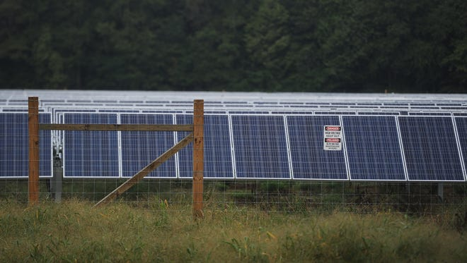A large group of solar panels sit on a solar farm site on Neal Parker Road near Oak Hall.
