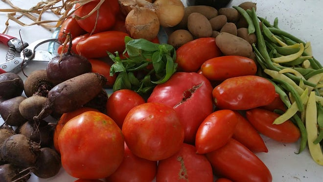 It was a banner year for garden veggies, especially the various kinds of tomatoes.