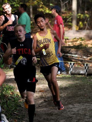 Runners compete in a Division II boys district race Saturday at Watkins Memorial.