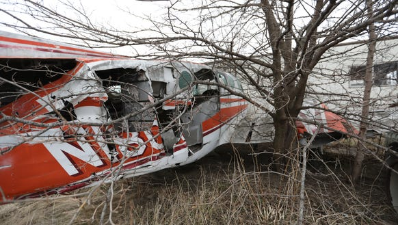 Tree branches poke through an abandoned aircraft at