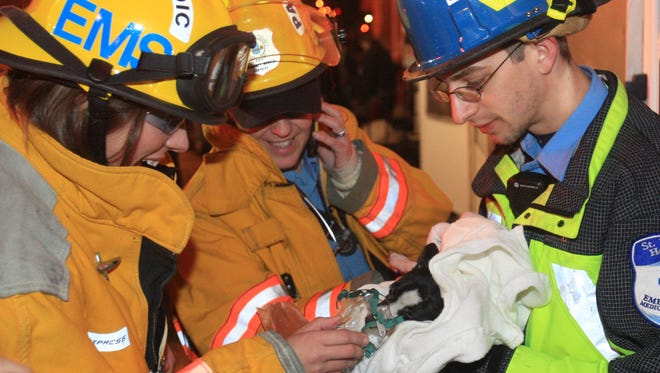 New Castle County paramedics Katrina Marcus (left) and Dana Bowerson (center) with Brandon Thomas of St. Francis Hospital EMS tend to a small dog rescued by firefighters at the scene. The dog was suffering from smoke inhalation but appeared lively after several minutes of administered oxygen. It was transported to a Windcrest Animal Hospital in 2012.