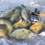 Deep basin angling a favorite winter strategy