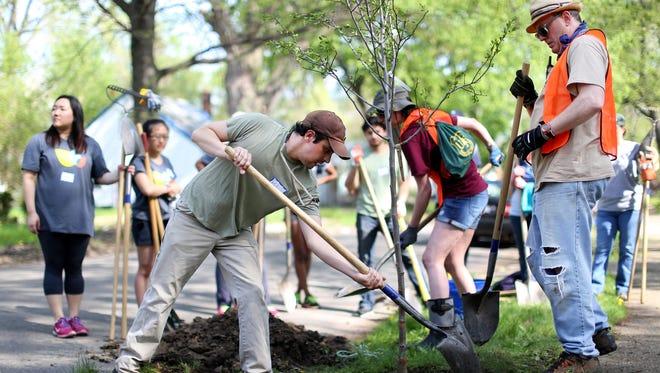 In May 2015, volunteers plant a tree, part of Greening of Detroit. Devon Buskin, Senior Program Officer for The Greening of Detroit, will be part of the Detroit Workforce System Leadership Development Academy.