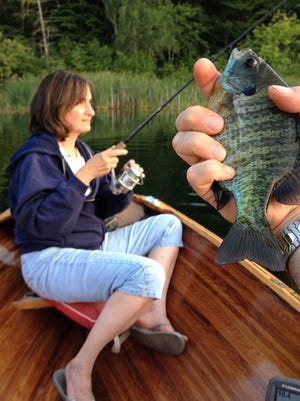 Anglers need roughly eight 7-inch bluegills to get a half-pound of fillets.